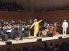 Im Orchester graben